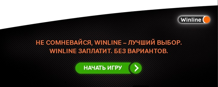 Букмекерская компания Winline